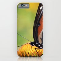 iPhone Cases featuring Pretty has wings by kealaphotography
