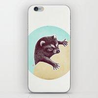 Climbing Raccoon iPhone & iPod Skin