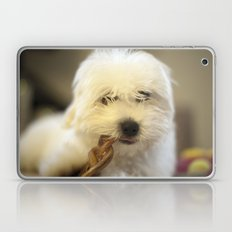 Moriarty & The Bully Stick Laptop & iPad Skin