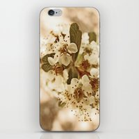white blossoms on a tree. iPhone & iPod Skin