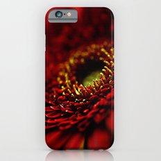 Red Gerbera iPhone 6 Slim Case