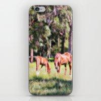 Horse And Foal Feeding I… iPhone & iPod Skin