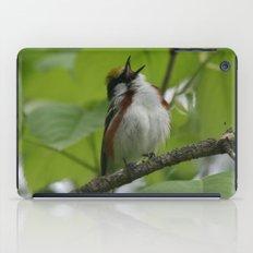 Chestnut-sided Warbler iPad Case