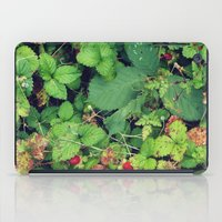 Blanketed iPad Case
