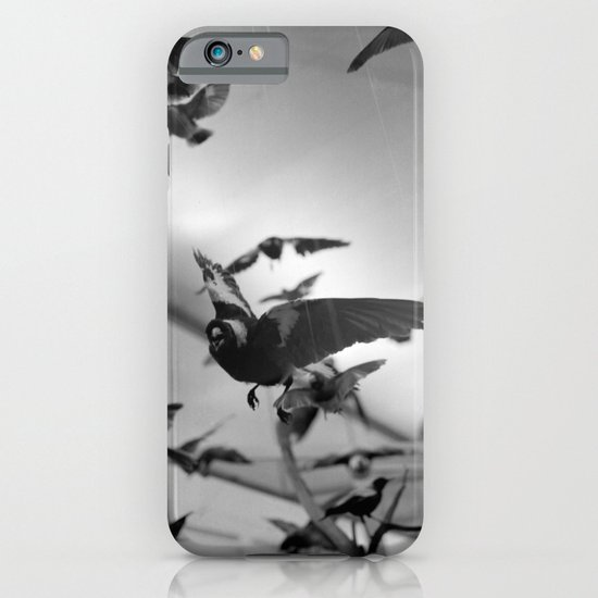 winged flight iPhone & iPod Case