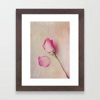 Hazy Rose Framed Art Print