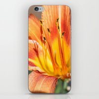 Tigerlily iPhone & iPod Skin