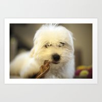 Moriarty & The Bully Stick Art Print
