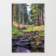 Life Flows Canvas Print