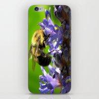 Bee All You Can Bee iPhone & iPod Skin