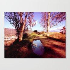 Interdimensional Pool Canvas Print