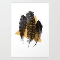feathers 2 Art Print