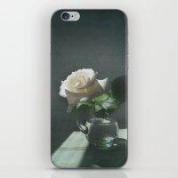 White Rose Translation iPhone & iPod Skin