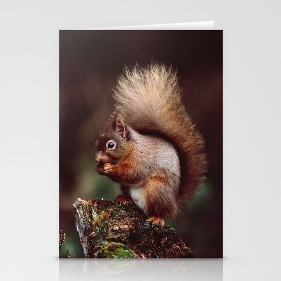 RED SQUIRREL. Stationery Card