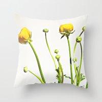 Golden Yellow Ranunculus Flowers on White Throw Pillow