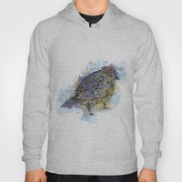 Watercolor Sparrow Hoody