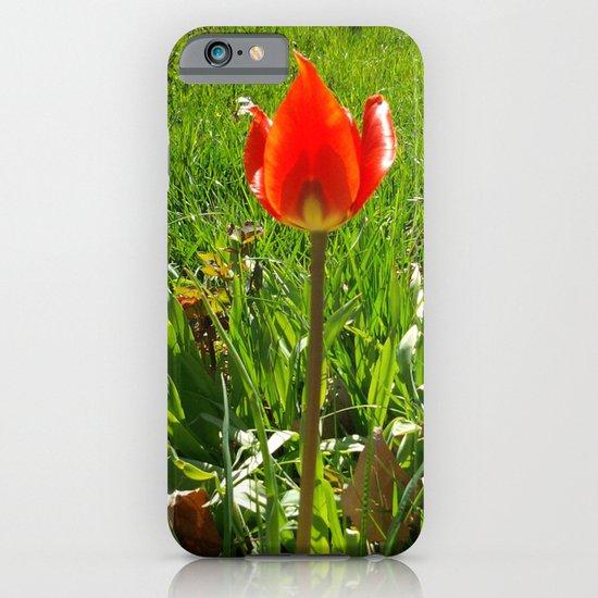 Red Tulip iPhone & iPod Case