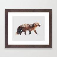 Arctic Red Fox Framed Art Print