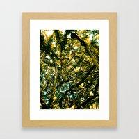 Monkey Popzzle Framed Art Print