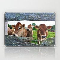 The Other Side Of The Fence Laptop & iPad Skin