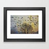 Bird Watching  - JUSTART… Framed Art Print