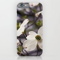 The Wee Dogwood Blooms No Less Beauty iPhone 6 Slim Case