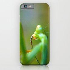 Praying Mantis 3 iPhone 6 Slim Case