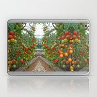 Hot 100 Laptop & iPad Skin