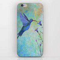 HUMMINGBIRD Don't FLY AW… iPhone & iPod Skin
