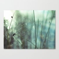 caught, beautifully Canvas Print