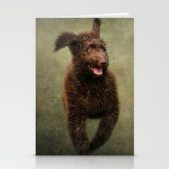 I am not a Muppet...I am a Labradoodle!!!! Stationery Card