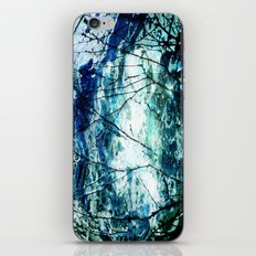 Artic Sea iPhone & iPod Skin