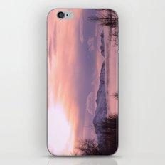 Rose Serenity Winter Fog iPhone & iPod Skin