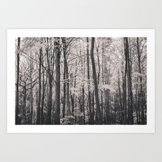 Deep in Woodland - Black and White Collection Art Print