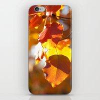 Embers IV iPhone & iPod Skin