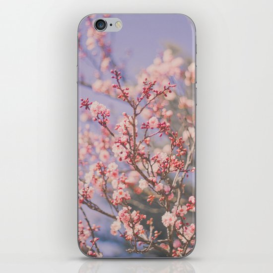 Spring makes it better iPhone & iPod Skin