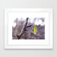 A sign of spring Framed Art Print
