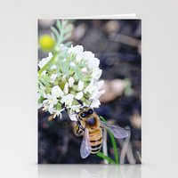 Busy Stationery Cards