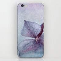 BLUE HYDRANGEA PETAL iPhone & iPod Skin