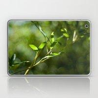 Bamboo Shadows Laptop & iPad Skin