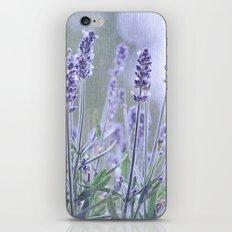 lavender 3 iPhone & iPod Skin