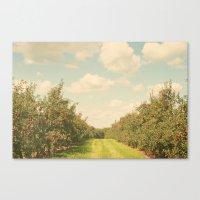 Allée de Pommes Canvas Print
