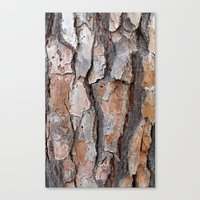 Bark 2 Canvas Print
