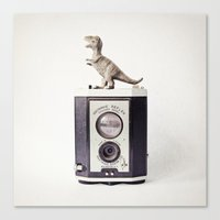 The Dinosaur And The Bro… Canvas Print
