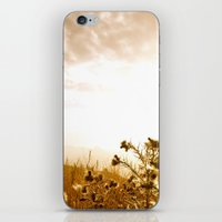 Can you hear that? iPhone & iPod Skin
