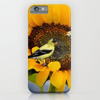 Sweet sunflower iPhone 6 Slim Case