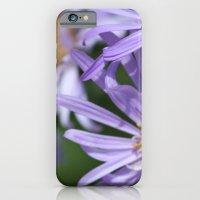 Daises Everywhere iPhone 6 Slim Case