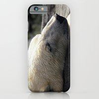 A polar bears' sweet dreams iPhone 6 Slim Case