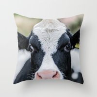 Aunty Moo Throw Pillow