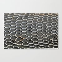 Hole in the net Canvas Print